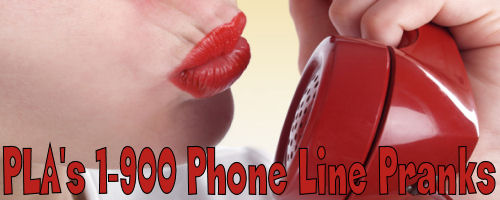 Prank Calls to 1-900 Numbers