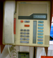 Staples Store Phone